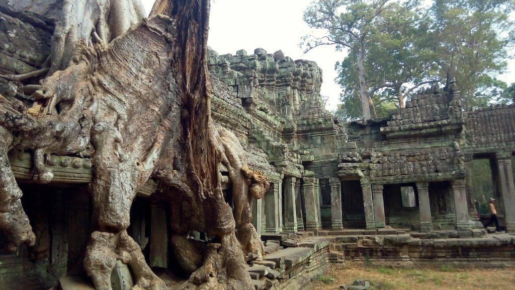 Best Temples Angkor Wat:Ta Phrom