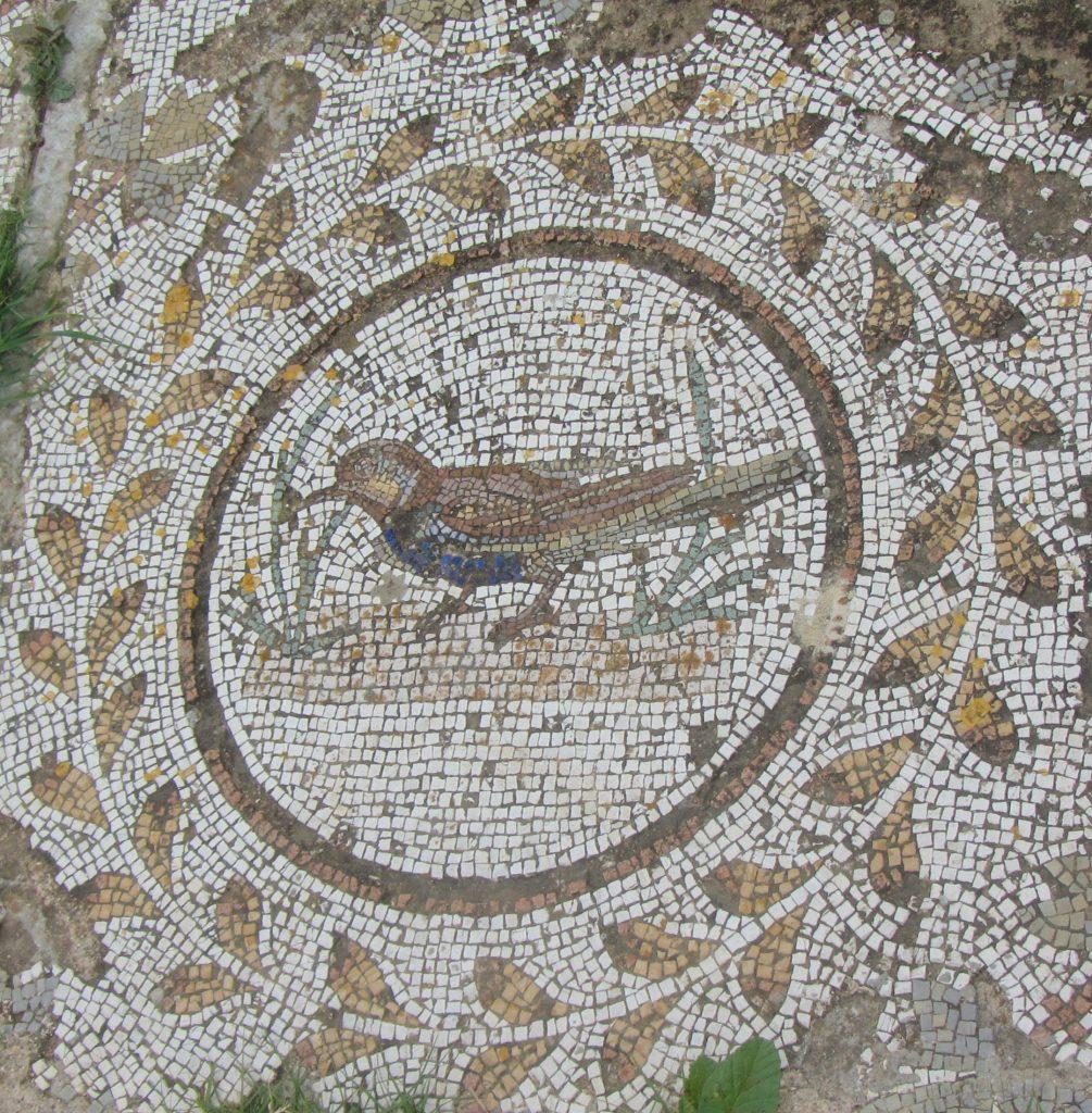 Pupput bird mosaic