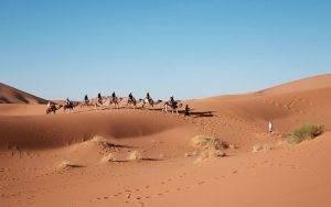 Avoiding heatstroke in the Sahara