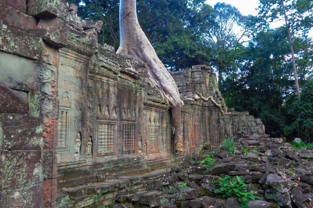 Best Temples Angkor Wat:Preah Khan