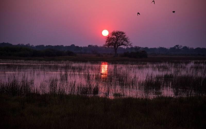 Backpacking Africa - Botswana Sunset