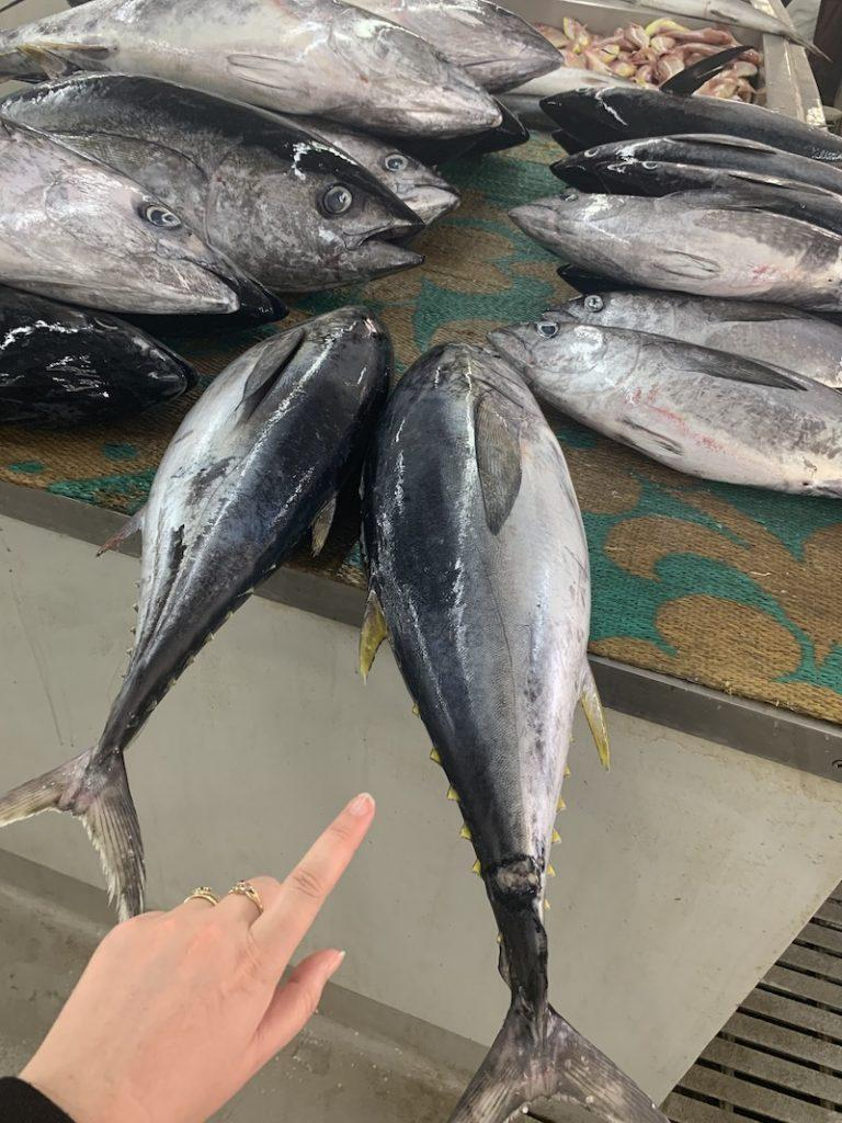 One Day in Muscat fish market Mutrah